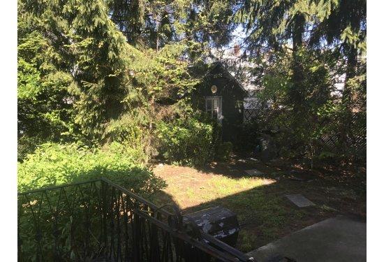 Nice size yard - Mature Landscaping provides plenty of privacy